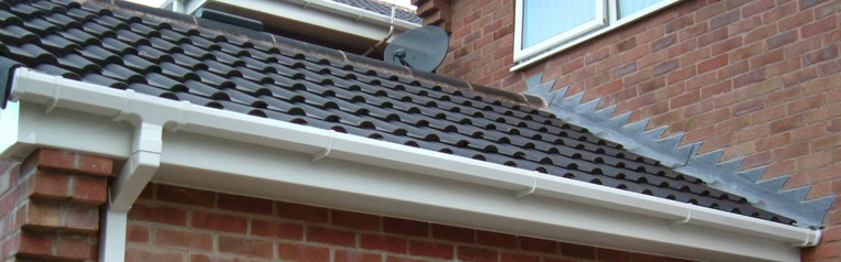 An image of colorbond guttering in Adelaide